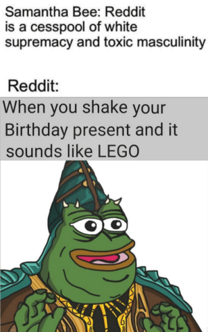 Birthday, Dank, and Lego: Samantha Bee: Reddit  is a cesspool of white  supremacy and toxic masculinity  Reddit:  When you shake your  Birthday present and it  sounds like LEGO Samantha frickin Bee by samfinmorchard MORE MEMES