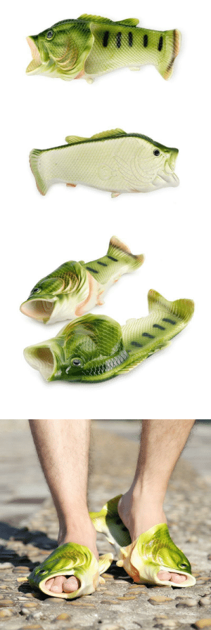 samanthasmiless:  Imagine, you wearing these comfortable Fish Slippers, everyone around you will be surprised to see. These are the perfect item to Present Gifts to your Loved ones or your friends who love Fishing or you and your whole squad can wear and go to the Beautiful Beaches. ***USE CODE: SUMMERFOR A DISCOUNT***=> AVAILABLE HERE <=: samanthasmiless:  Imagine, you wearing these comfortable Fish Slippers, everyone around you will be surprised to see. These are the perfect item to Present Gifts to your Loved ones or your friends who love Fishing or you and your whole squad can wear and go to the Beautiful Beaches. ***USE CODE: SUMMERFOR A DISCOUNT***=> AVAILABLE HERE <=