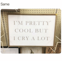 accurate: Same  I'M PRETTY  COOL BUT  I CRY A LOT accurate