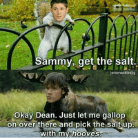I... i don't know what to say...: Sammy  , get the salt  jersenackleslig  Okay Dean. Just let me gallop  on over there and pick the salt up  with my hooves I... i don't know what to say...