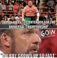 "The bird has left the nest 😂😂 prowrestling professionalwrestling wwe wweraw wwefans wwemitb wweuniverse wweuniversalchampionship wwewrestling wweworldheavyweightchampion wwefunny wwememes wrestle wrestler wrestlers wrestling wrestlingmemes samoajoe worldwrestlingfederation worldwrestlingentertainment: SAMOA JOE IS CONTENDER FOR THE  UNIVERSAL CHAMPIONSHIP  MY BOY GROWS UP SO FAST"" The bird has left the nest 😂😂 prowrestling professionalwrestling wwe wweraw wwefans wwemitb wweuniverse wweuniversalchampionship wwewrestling wweworldheavyweightchampion wwefunny wwememes wrestle wrestler wrestlers wrestling wrestlingmemes samoajoe worldwrestlingfederation worldwrestlingentertainment"