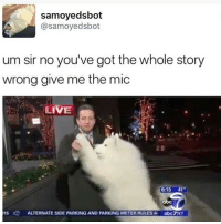 Trendy, Meter, and Mic: samoyedsbot  (a samoyed sbot  um sir no you've got the whole story  wrong give me the mic  LIVE  6:15 41  15  ALTERNATE SIDE PARKING AND PARKING METER RULESAa abc7NY I can't stop coughing