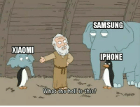 Join our dank meme group 8Shit Memes: SAMSUNG  XIAOM  PHONE  What the hell is this? Join our dank meme group 8Shit Memes