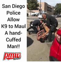Memes, Police, and Smh: San Diego  Police  Allow  K9 to Maul  A hand-  Cuffed  Man!!  pmuu  HIPHO *GRAPHIC* Smh! SanDiego Police officer had no control over his K9 dog, while the man is Handcuffed. - FULL VIDEO AT PMWHIPHOP.COM LINK IN BIO