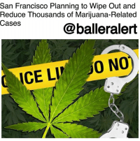 "Community, Drugs, and Memes: San Francisco Planning to Wipe Out and  Reduce Thousands of Marijuana-Related  Cases  @balleralert  ICE LIO NO San Francisco Planning to Wipe Out and Reduce Thousands of Marijuana-Related Cases - blogged by: @ashleytearra ⠀⠀⠀⠀⠀⠀⠀ ⠀⠀⠀⠀⠀⠀⠀ According to the San Francisco District Attorney's Office, after California's latest weed legalization laws, the city's prosecutors are aiming to eradicate or reduce thousands of marijuana-related cases that date back as far as 1975. ⠀⠀⠀⠀⠀⠀⠀ ⠀⠀⠀⠀⠀⠀⠀ Reportedly, Proposition 64 will be applied to nearly 5,000 felony convictions and over 3,000 misdemeanors. While majority of the felonies for cannabis usage will be reviewed, recalled, and prepped for resentencing, the misdemeanors will be dismissed, said District Attorney George Gascón. ⠀⠀⠀⠀⠀⠀⠀ ⠀⠀⠀⠀⠀⠀⠀ Proposition 64-also known as the Adult Use of Marijuana act, legalized the recreational use of marijuana in the state of California, and it also permitted those convicted of associated charges to petition the courts to throw out or reduce their penalties. ⠀⠀⠀⠀⠀⠀⠀ ⠀⠀⠀⠀⠀⠀⠀ However, due to the lengthy process of filing a petition, Gascón says that they are currently executing a plan to wipe out and decrease a mass of cases that haven't even been petitioned. ⠀⠀⠀⠀⠀⠀⠀ ⠀⠀⠀⠀⠀⠀⠀ ""What we want to make sure is… that people who were really the victims of the war on drugs-in general terms, and are people who are trying to get their lives in the right direction, that they get relief they deserve,"" Gascón expressed. ""We have damaged a lot of people in our community."""