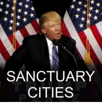 Donald Trump, Memes, and Immigration: SANCTUARY  CITIES 2 JAN: Just what are sanctuary cities, and why does President-elect Donald Trump want to get rid of them? One of the cornerstones of Donald Trump's election platform was his tough stance on immigration. But what can he do about cities that refuse to enforce federal policy? Find out more: bbc.in-sanctuary DonaldTrump USA SantaFe NewMexico SanctuaryCity Immigration BBCShorts @BBCNews