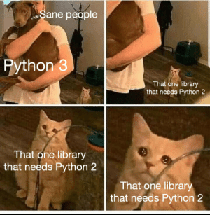 As a student, it really makes me angry: Sane people  Python 3  That one library  that needs Python 2  That one library  that needs Python 2  That one library  that needs Python 2 As a student, it really makes me angry