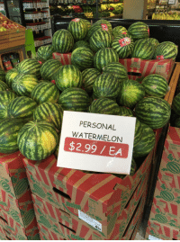When somebody else's watermelon just won't do.: SANS PEPINS  PERSONAL  WATERMELON  $2.99 EA  COMPTE  UCT OF  MEXICO When somebody else's watermelon just won't do.