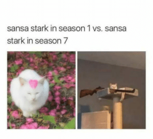 Game of Thrones, The Game, and Sansa Stark: sansa stark in season 1 vs. sansa  stark in season 7 In the game of thrones,you win or you die  !!!