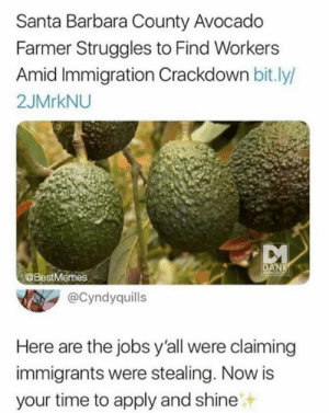 lmao lemme find out y'all don't even want the jobs: Santa Barbara County Avocado  Farmer Struggles to Find Workers  Amid Immigration Crackdown bit.ly/  2JMrkNU  DANK  @BestMermes  @Cyndyquills  Here are the jobs y'all were claiming  immigrants were stealing. Now is  your time to apply and shine lmao lemme find out y'all don't even want the jobs