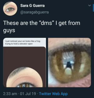 "From her eyes down to her toad.: Sara G Guerra  @saragabguerra  These are the ""dms"" I get from  guys  I just noticed your avi looks like a frog  trying to hold a elevator open  2:33 am 01 Jul 19 Twitter Web App From her eyes down to her toad."