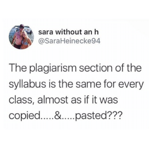Follow us @studentlifeproblems​: sara without an h  @SaraHeinecke94  The plagiarism section of the  syllabus is the same for every  class, almost as if it was Follow us @studentlifeproblems​