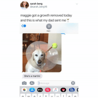 she looks so pleased 😂 (@sarah_berg16 on Twitter): sarah berg  @sarah_berg16  maggie got a growth removed today  and this is what my dad sent me Y  2  Dad>  She's a martini  Message  éPay  IAI she looks so pleased 😂 (@sarah_berg16 on Twitter)