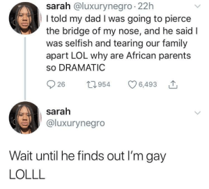 Dad, Family, and Lol: sarah @luxurynegro 22h  I told my dad I was going to pierce  the bridge of my nose, and he said I  was selfish and tearing our family  apart LOL why are African parents  so DRAMATIC  26 1954 6,493  sarah  @luxurynegro  Wait until he finds out I'm gay  LOLLL You have brought shame to this house