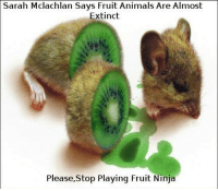 Animal: Sarah Mclachlan Says  Fruit Animals Are Almost  Extinct  Please, Stop Playing Fruit  Ninja