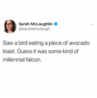 @pubity was voted 'best meme account on instagram' 😂: Sarah McLaughlin  @sarahemclaugh  Saw a bird eating a piece of avocado  toast. Guess it was some kind of  millennial falcon @pubity was voted 'best meme account on instagram' 😂
