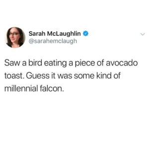 Saw, Avocado, and Guess: Sarah McLaughlin  @sarahemclaugh  Saw a bird eating a piece of avocado  toast. Guess it was some kind of  millennial falcon.