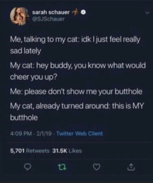 Clean out dump…: sarah schauer  @SJSchauer  Me, talking to my cat: idk I just feel really  sad lately  My cat: hey buddy, you know what would  cheer you up?  Me: please don't show me your butthole  My cat, already turned around: this is MY  butthole  4:09 PM 2/1/19 - Twitter Web Client  5,701 Retweets 31.5K Likes Clean out dump…
