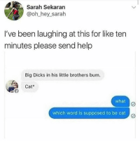 Dicks, Head, and Memes: Sarah Sekaran  @oh_hey_sarah  I've been laughing at this for like ten  minutes please send help  Big Dicks in his le brothers bum.  Cat  what  which word is supposed to be cat c My head 😩