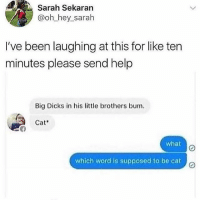 Dicks, Memes, and Help: Sarah Sekaran  @oh_hey_sarah  I've been laughing at this for like ten  minutes please send help  Big Dicks in his lttle brothers bum.  Cat  what  which word is supposed to be cat cat*