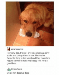 Must Love Dogs <3   Pic via; http://imgur.com/gallery/d9X2U: sarahsequins  I love my dog. If ever I cry, he collects up dirty  socks and brings them to me. They're his  favourite thing in the world and they make him  happy, so they'll make me happy too. He's a  good boy.  trinand tonic  we do not deserve dogs Must Love Dogs <3   Pic via; http://imgur.com/gallery/d9X2U
