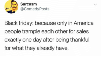 America: Sarcasm  @ComedyPosts  Black friday: because only in America  people trample each other for sales  exactly one day after being thankful  for what they already have. America