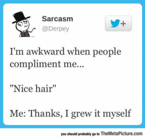 "srsfunny:I'm A Bit Awkward: Sarcasm  @Derpey  I'm awkward when people  compliment me...  ""Nice hair""  Me: Thanks, I grew it myself  19  you should probably go to TheMetaPicture.com srsfunny:I'm A Bit Awkward"