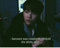Idiot, Sarcasm, and Confuse: Sarcasm was created to confuse  the idiots, idiot