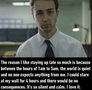 meirl: Sarcasmlol.com  The reason I like staying up late so much is because  between the hours of 1am to 5am, the world is quiet  and no one expects anything from me. I could stare  at my wall for 4 hours and there would be no  consequences. It's so silent and calm. I love it. meirl