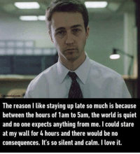 Love, Memes, and Quiet: Sarcasmlol.com  The reason like staying up late so much is because  between the hours of 1am to 5am, the world is quiet  and no one expects anything from me. I could stare  at my wall for 4 hours and there would be no  consequences. It's so silent and calm. I love it. DV6