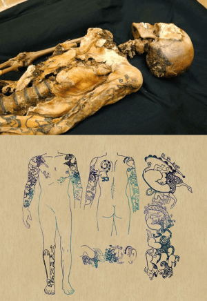 Fucking, Horses, and News: sartorialadventure: captainoftheseaqueen:  xcgirl08:  shoujofeels:  becausetheinternet:  A 2500 year old mummy that had some amazing tattoos.  WHAT. NO FUCKING WAY.  YO HOLD ON.  IT GETS BETTER. This mummy, found in the  Altai mountains of Siberia, is actually that of a young woman who died at about the age of twenty-five; she is thought to have been a member of the Pazyryk tribe. She was buried with six horses and two similarly-tattooed men (the horned griffon that decorates her shoulder also appears on the man buried closest to her, covering most of his right side), possibly escorts. She was also wearing a horse-hair wig, silk, and elaborate boots, which is all a level of ceremony that would have likely only been accorded to a woman of high rank. You didn't get inked like this unless you were very important, and had worked your way up to that importance.  …Hence, of course, the references to her by researchers as 'The Ukok Princess,' although due to the lack of weapons in her grave they have concluded that the woman was in fact a healer or a storyteller.   And now I'm all consumed with curiosity: Who was she? What amazing things did she accomplish? Why these symbols, and what did they mean? Who were the two men alongside her? The most informative article about it can be found here, although I would completely eat up any other information you guys could find.    @blackbearmagic  Makes me think of the 5,000-year-old Persian woman they found who was 6 feet tall and had a golden prosthetic eye.