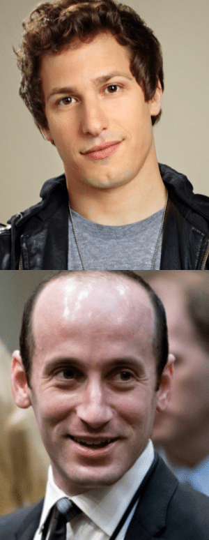 Life, Stephen, and Tumblr: sashayed:  just need to share with someone that andy samberg is 8 years older than White House goblin-of-all-work Stephen Miller, in case u were wondering whether being an evil, unloveable toady will literally suck the life from your body