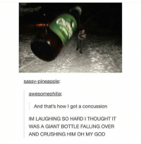Concussion, God, and Memes: sassy-pineapple:  awesomephilia:  And that's how I got a concussion  IM LAUGHING SO HARD I THOUGHT IT  WAS A GIANT BOTTLE FALLING OVER  AND CRUSHING HIM OH MY GOD A giant bottle😂 https://t.co/BbwfArTDXp