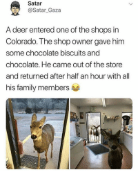 Deer, Family, and Memes: Satar  @Satar_Gaza  A deer entered one of the shops in  Colorado. The shop owner gave him  some chocolate biscuits and  chocolate. He came out of the store  and returned after half an hour with all  his family members Amazing