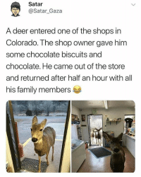 Deer, Family, and Memes: Satar  y@Satar_Gaza  A deer entered one of the shops in  Colorado. The shop owner gave him  some chocolate biscuits and  chocolate. He came out of the store  and returned after half an hour with all  his family members @Pablopiqasso is one of the few pages actually worth following 😂
