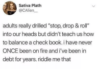 "Fire, Memes, and Book: Sativa Plath  @CAlien  adults really drilled ""stop, drop & roll""  into our heads but didn't teach us how  to balance a check book. i have never  ONCE been on fire and i've been in  debt for years. riddle me that My doggo is going berserk right now and I dont know why"