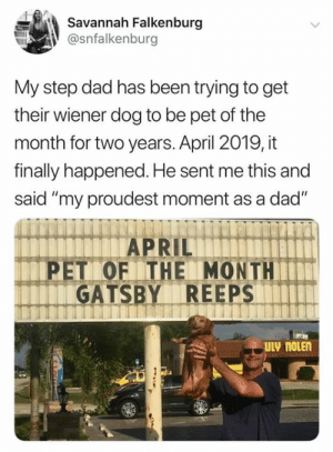 "So happy for him (credit & consent: @savannahfalkenburg on IG): Savannah Falkenburg  @snfalkenburg  My step dad has been trying to get  their wiener dog to be pet of the  month for two years. April 2019, it  finally happened. He sent me this and  said ""my proudest moment as a dad""  PET OF THE MONTH  GATSBY REEPS  ULV noLEn So happy for him (credit & consent: @savannahfalkenburg on IG)"