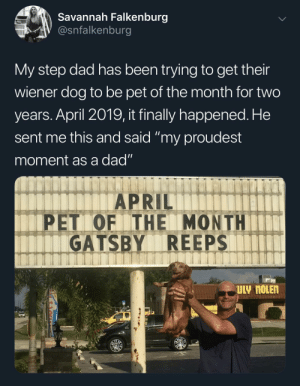 "Super proud of Gatsby!: Savannah Falkenburg  V @snfalkenburg  My step dad has been trying to get their  wiener dog to be pet of the month for two  years. April 2019, it finally happened. He  sent me this and said ""my proudest  moment as a dad""  APRIL  PET OF THE MONTHIT  GATSBY REEPS  eer Super proud of Gatsby!"
