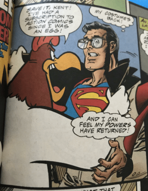 Foghorn Leghorn reveals Superman's secret identity to the world.: SAVE IT KENT!  I'VE HAD A  SUBSCRIPTION TO  ACTION COMICS  SINCE I WNAS  AN EGG!  MY COSTUMES  BACK!  AN  LA  ER  A  AND I CAN  FEEL MY POWERS  HAVE RETURNED!  or THAT Foghorn Leghorn reveals Superman's secret identity to the world.