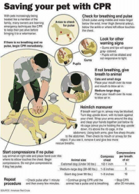 How to save your pet's life: Saving your pet with CPR  With pets increasingly being  Check for breathing and pulse  treated like a member of the  Check pulse using middle and index finger  Areas to check  family, many owners are learning  for below the wrist, inner thigh (femoral artery,  pulse below the ankle or  where left elbow touches  emergency techniques like CPR  to keep their pet alive before  the chest.  bringing it to a  Look for other  If there is no breathing and no  warning signs  pulse, begin CPR immediately.  Gums and lips will appear  gray-colored.  Pupils will be dilated and  Gums not responsive to light.  Pupils  If not breathing, give  breath to animal  Cats and small dogs  Place your mouth over its nose  and mouth to blow air in.  Medium-large dogs  Place your mouth over its nose.  to blow air in  Heimlich maneuver  breath won't go in, airway may be blocked.  Turn dog upside down, with its back against  your chest. Wrap your arms around the dog  and clasp your hands together just below its  rib cage (since you're holding the dog upside  down, it's above the rib cage, in the  abdomen). Using both arms, give five sharp thrusts  to the abdomen. Then check its mouth or airway for the  object, you see it, remove it and give two more  rescue breaths,  Start compressions if no pulse  Compressions  Lay animal on right side and place hand over ribs  Compress  per breath  where its elbow touches the chest. Begin  Animal size  of chest  compressions. Do not give compression  Catsman dog (Under 30 lbs) 1/2.1 inch  dog has pulse.  Medium large dog (30-90 lbs) 1-3inches 5  Giant dog (over 90 lbs) 1-3 inches  10  Repeat  Check pulse after 1 minute  Continue giving CPR until the  Stop CPR  procedure and then every few minutes,  animal has a pulse and is breathing. after 20 minutes,  SOURCE American Red Cross How to save your pet's life