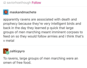 Apparently, Food, and Birds: saviorhoethough Follow  maskandmachete  apparently ravens are associated with death and  prophecy because they're very intelligent birds and  back in the day they learned p quick that large  groups of men marching meant imminent corpses to  feed on so they would follow armies and i think that's  v metal  celticpyro  To ravens, large groups of men marching were an  omen of free food Ravens