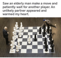 Saw, Heart, and Another: Saw an elderly man make a move and  patiently wait for another player. An  unlikely partner appeared and  warmed my heart.