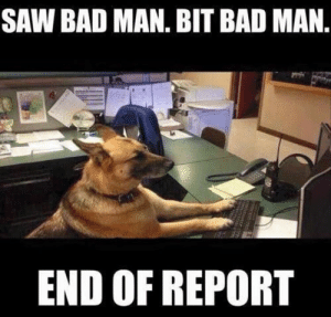 Animals, Bad, and Dogs: SAW BAD MAN. BIT BAD MAN  END OF REPORT Dog Memes Of The Day 32 Pics – Ep33 #dogs #doglovers #lovelyanimalsworld - Lovely Animals World