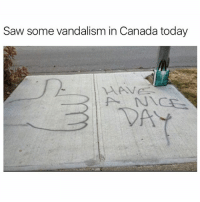 Funny, Meme, and Canadã¡: Saw some vandalism in Canada today (@x__antisocial_butterfly__x) is a must follow!