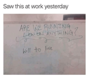 Funny, Saw, and Tumblr: Saw this at work yesterday  Ane We guNNTNG  hill to live