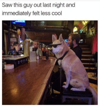 I'll take a bourbon on the woofs. (@nationalmemeographic ) <-- Follow 😎😎😎: Saw this guy out last night and  immediately felt less cool I'll take a bourbon on the woofs. (@nationalmemeographic ) <-- Follow 😎😎😎