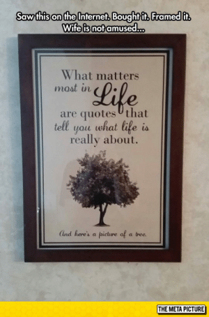 srsfunny:The Most Inspirational Quote Ever: Saw thison the Interneft Boughtft, Framed it  Wife is not amused.  What matters  moat in  Lile  are quotes Uthat  tell you what life is  really about.  Ind here's a picture of a tree.  THE META PICTURE srsfunny:The Most Inspirational Quote Ever