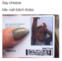 Ball Is Life, Memes, and Kobe: Say cheese  Me: nah bitch Kobe  FOR YOUTH DEVELOPMENT  FOR HEALTHY LIVING  FOR  06/28/2014  2090773145 Ball is life 🏀 • ➫➫ Follow @savagememesss for more posts daily