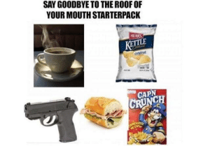 Dank, Memes, and Target: SAY GOODBYE TO THE ROOF OF  YOUR MOUTH STARTERPACK  HERRS  KETTLE  original  CAPN  CH Ya hate to see it by aprilmariko MORE MEMES