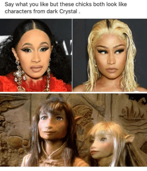 Dedicated cosplayers.: Say what you like but these chicks both look like  characters from dark Crystal. Dedicated cosplayers.
